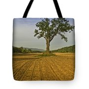 Waiting For The Corn Tote Bag