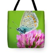 Waiting For The Sun Tote Bag