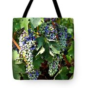 Waiting For Wine Tote Bag