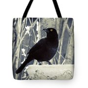 Waiting Grackle Tote Bag