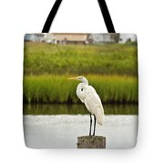 Waiting On Dinner Time Tote Bag