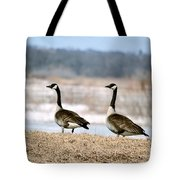 Waiting On Spring Tote Bag