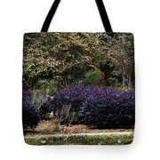 Waiting To Be Found Tote Bag