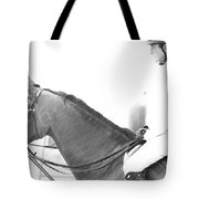 Waiting To Jump Tote Bag