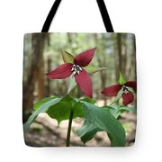 Wake Robin Pair  Tote Bag