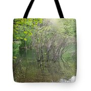 Walden Pond Tote Bag by Catherine Gagne