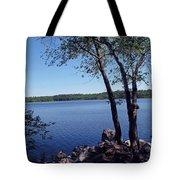 Walden Pond Saugus Ma Tote Bag by Barbara McDevitt