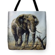 Walk About Tote Bag
