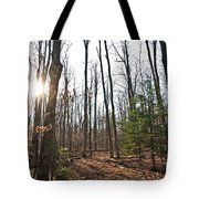 Walk In The Woods2 Tote Bag