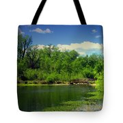 Walk With Me To The Other Side Tote Bag