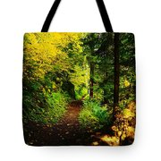 Walking An Autumn Path Tote Bag