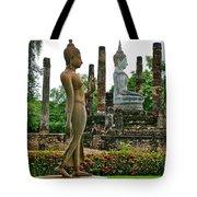 Walking And Sitting Buddha Images At Wat Sa Si In Sukhothai Historical Park-thailand Tote Bag