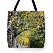 Walking Down Senators Highway Tote Bag