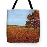 Walking In Big Meadow Tote Bag