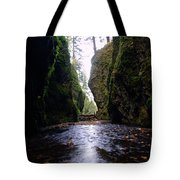 Walking In The Gorge Tote Bag