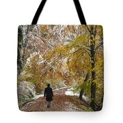 Walking Into Winter - Beautiful Autumnal Trees And The First Snow Of The Year Tote Bag by Matthias Hauser