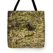 Walking On The Reeds Tote Bag