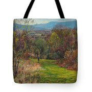 Walking Through The Woods In Spring Tote Bag