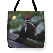 Walking With A Waddle Tote Bag