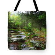 Walking With Light Tote Bag