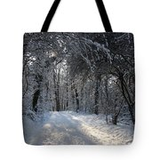 Walkway In Black And White Tote Bag