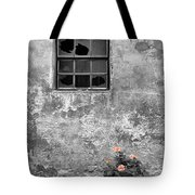 Window And Flowers Tote Bag