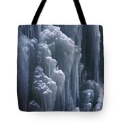 wall of ice in Partnach gorge 3 Tote Bag