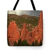 Wall Of The Gods Tote Bag