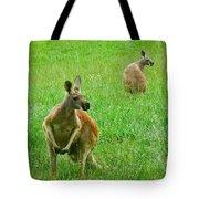 Wallabies Tote Bag