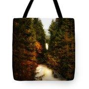 Wallace Fall North Fork Tote Bag