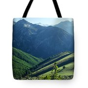 1m5903-wallowa Mountains And Valley Of The East Fork Tote Bag