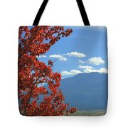 Dn5930-wallowa Valley In Fall Tote Bag
