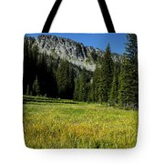 Wallowas - No. 4 Tote Bag