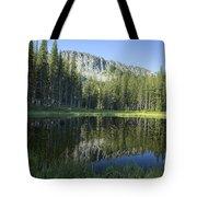 Wallowas No. 7 Tote Bag