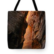 Wallstreet - The Narrows In Zion National Park. Tote Bag