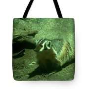 Wandering Badger Tote Bag