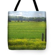 Wandering Hwy 51 Mississippi Tote Bag