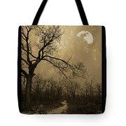 Waning Winter Moon Tote Bag