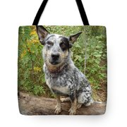 Wanna Play Tote Bag by James Peterson