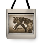 War Horse Old Photo Fx Tote Bag by Crista Forest
