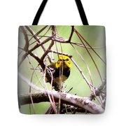 Warbler - Black-throated Green Warbler Tote Bag