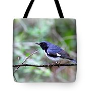 Warbler With Lunch Tote Bag