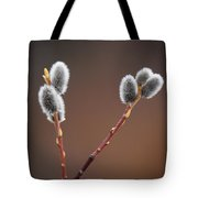 Warm And Fuzzy Tote Bag