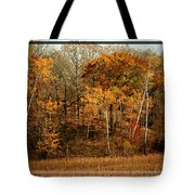 Warm Autumn Glow Tote Bag