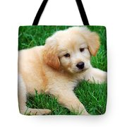 Warm Fuzzy Puppy Tote Bag by Christina Rollo