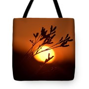 Warm Summer's Morn 2013 Tote Bag