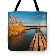 Warm Winter Afternoon Tote Bag