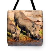 Warthog Family Tote Bag