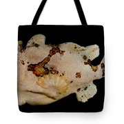 Warty Frogfish Tote Bag