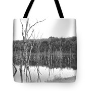 Wash Out Tote Bag